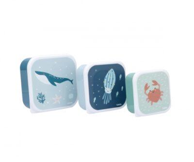 3 Cajas Almuerzo Ocean